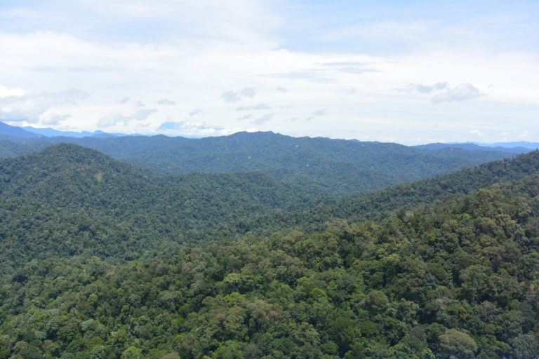The terrain of FMU5 ranges from 150 to 2,300 meters above sea level. - Photo credit / © WWF-Malaysia/STCP