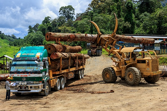 A logging operation in Sabah's interior in this photo taken off the internet.